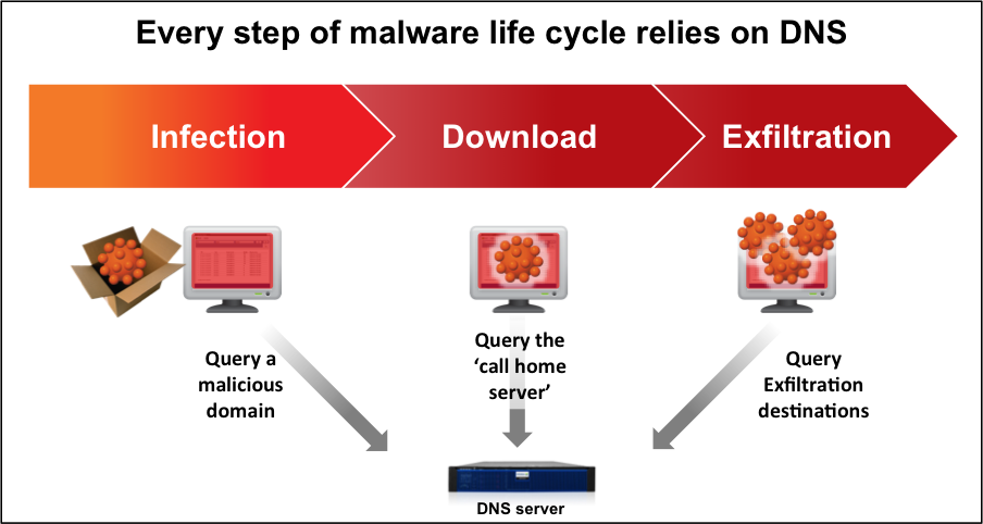 Every step of malware life cycle relies on DNS